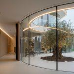 Esta Casa Está Diseñada Alrededor de Un Olivo Centenario
