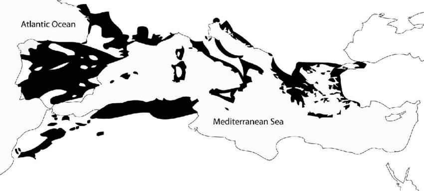 Mapa de la distribución MEditerrean de los Quercus o Robles Ginart Oleas